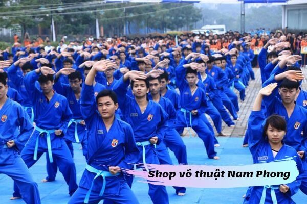 Võ phục các phái ở Nam Định
