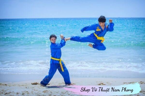 Màu xanh hòa bình - Ý nghĩa của Võ Phục Vovinam