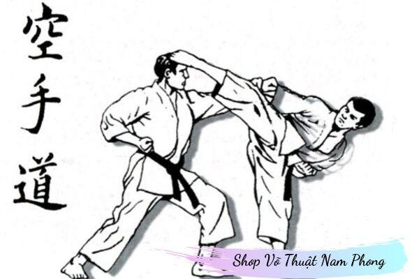 Võ Karatedo