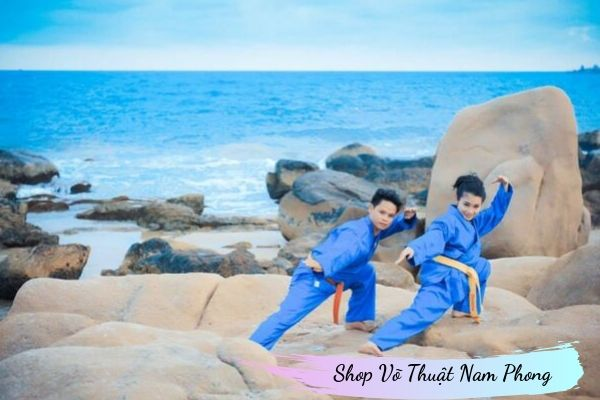 Vovinam - Việt Võ Đạo