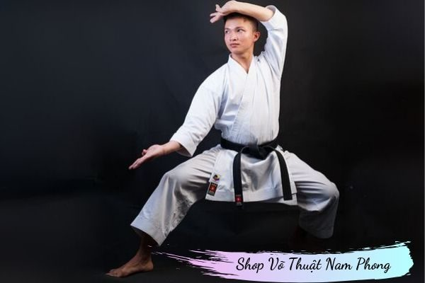 Võ phục Karatedo Kaki